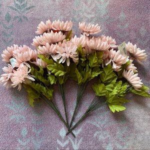 4 Pink Mums 💝